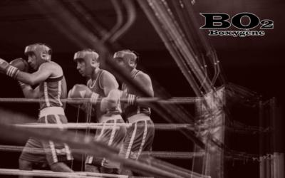 Stage de boxe – du 10 au 15 décembre 2018